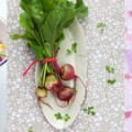 Link toFood photography and food styling workshop in Montreal with Aran Goyoaga