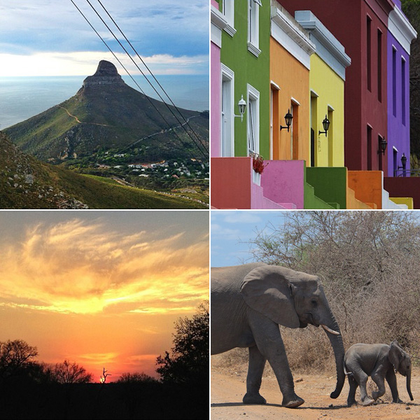 south africa © Will Travel for Food