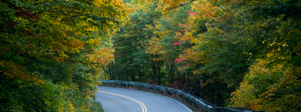 road trip vermont © Will Travel for Food