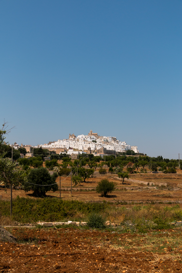 ostuni puglia road trip © Will Travel for Food