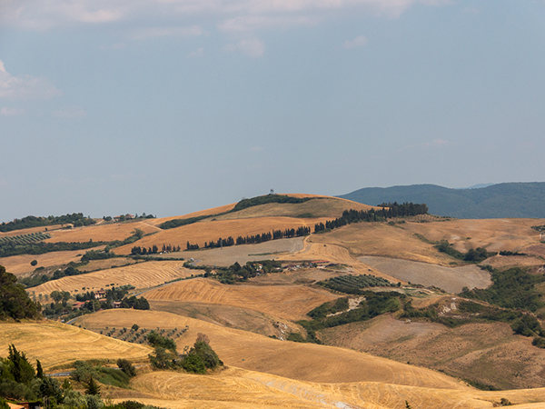 guide to tuscany © Will Travel for Food