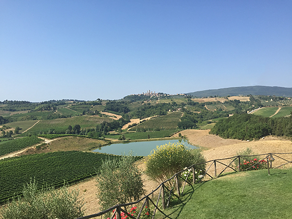 san gimignano guide © Will Travel for Food