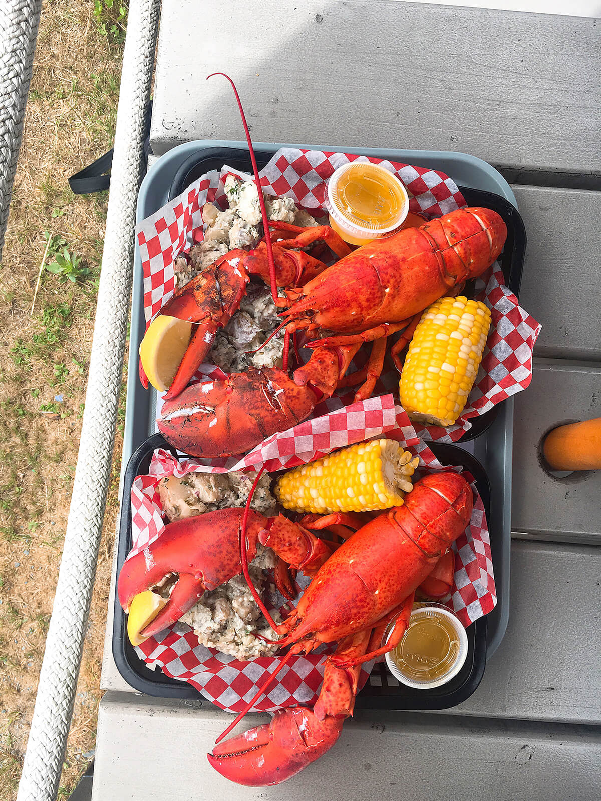 best lobster south coast nova scotia © Will Travel for Food