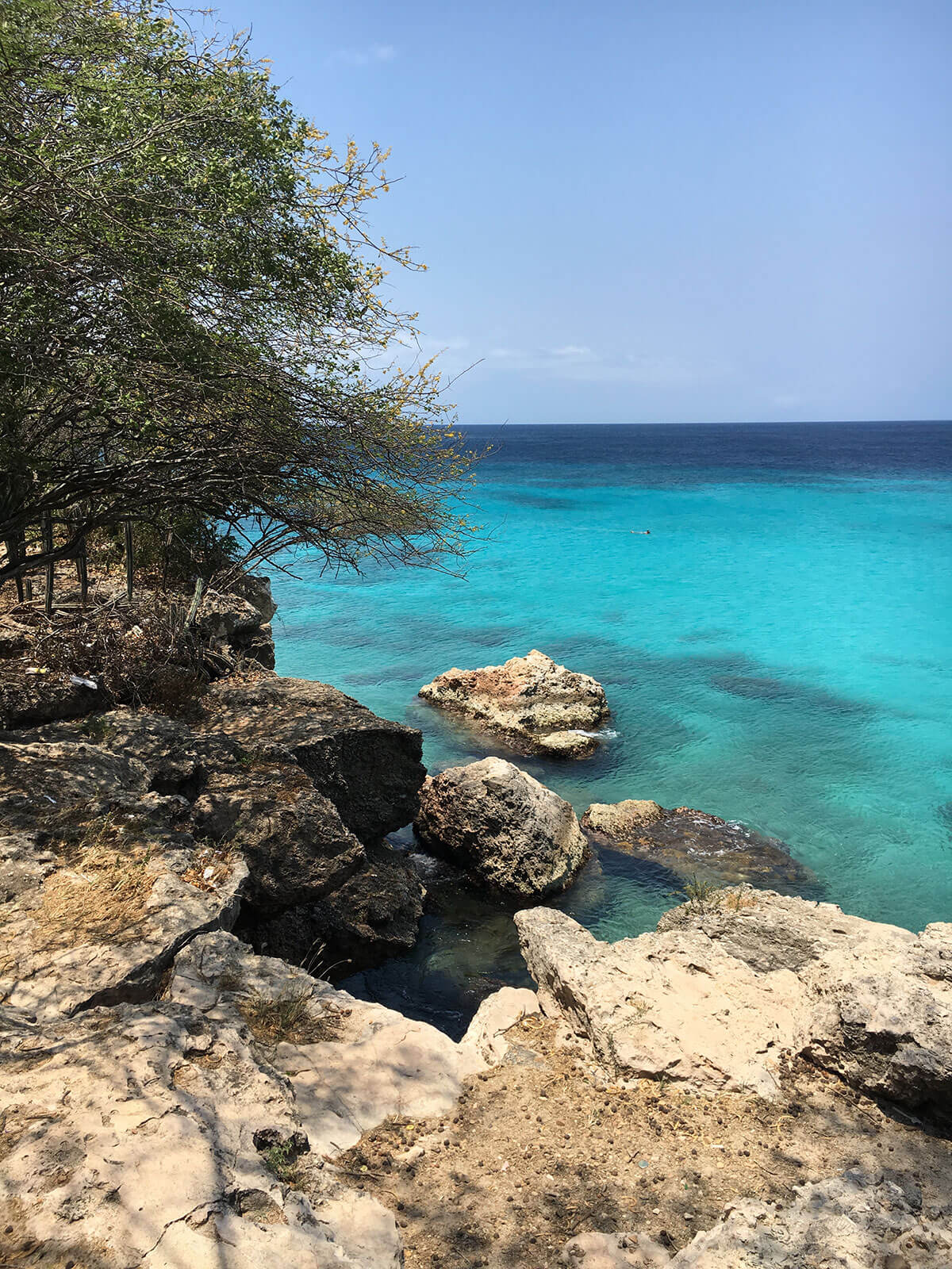 Playa Kenepa best beach curacao © Will Travel for Food